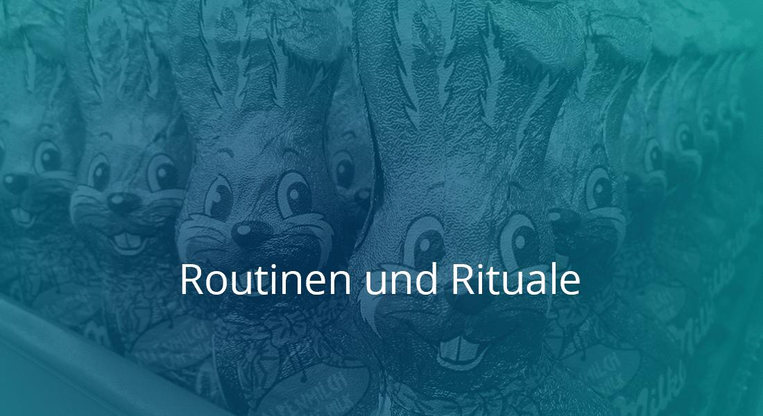 Routinen und Rituale