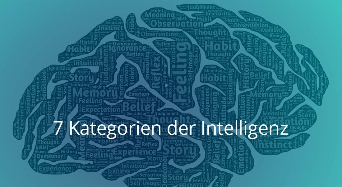 7 Kategorien der Intelligenz