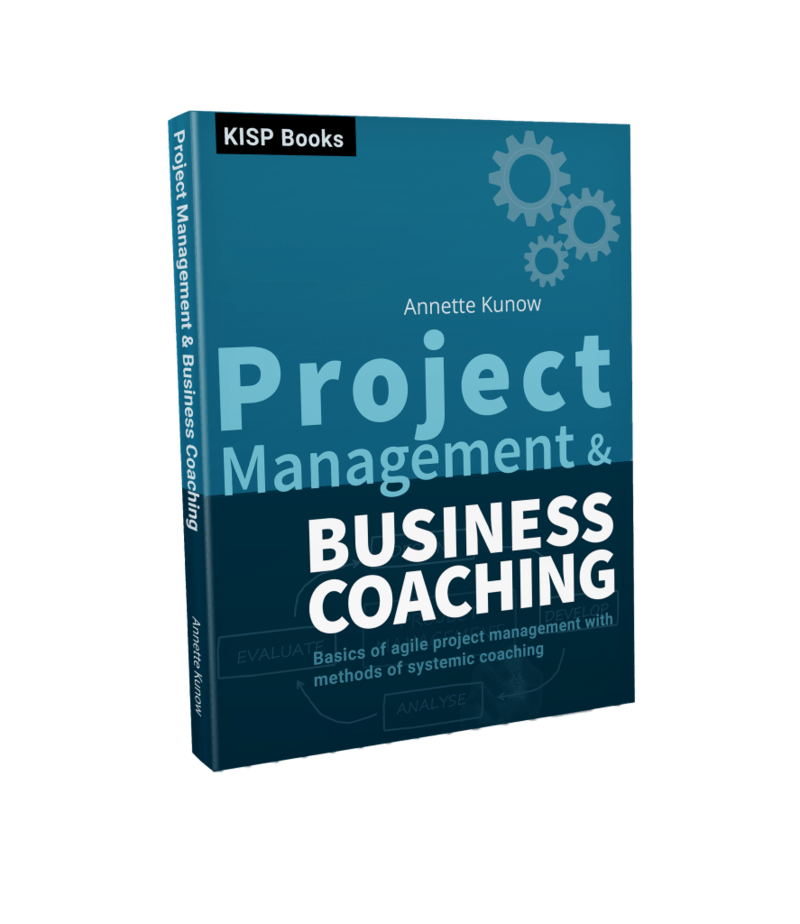 project management business coaching
