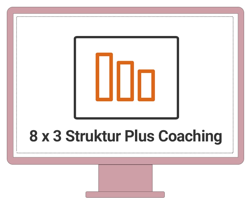 8 x 3 Struktur Plus Coaching