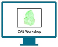 CAE-Workshop
