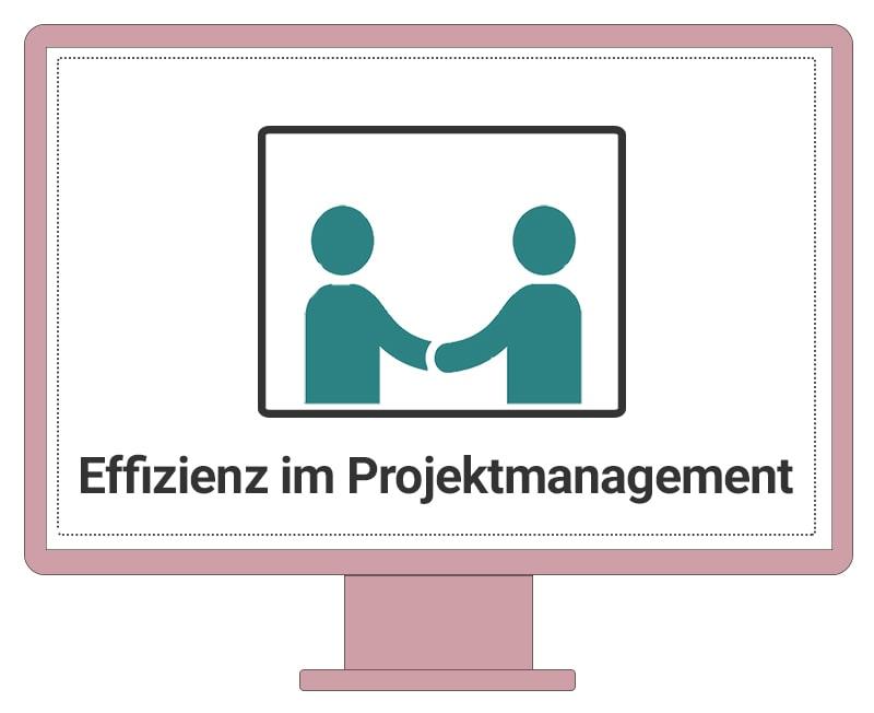 Einzel-Coaching-Effizienz-im-Projektmanagement