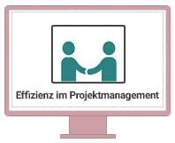 Einzel-Coaching Effizienz im Projektmanagement