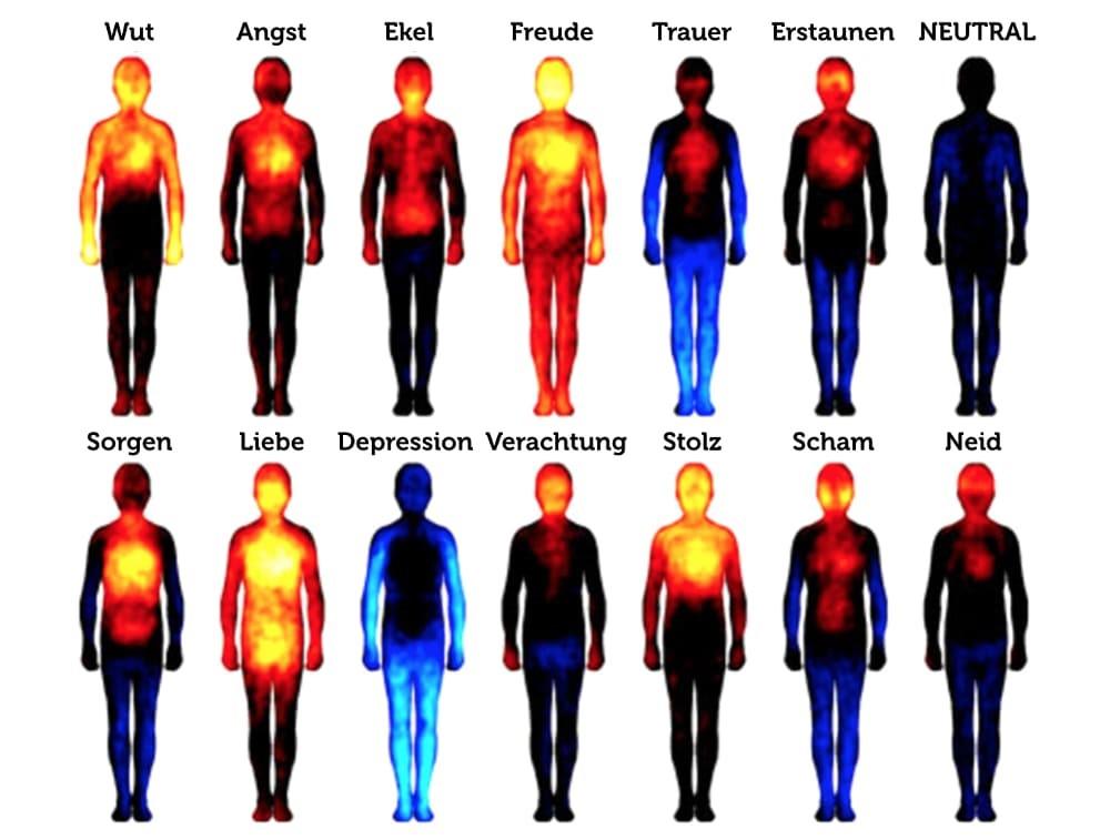 Bauchgefühl Körperzonen-Gefühl